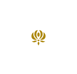 Dominus Production Store | DVD, Libri, Musica
